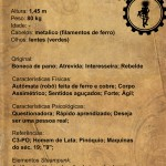 CA___Emilia___Creation_sheet_by_grimorioilustrado